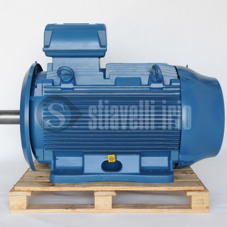 WEG Electric Motor 315kW -6 poles