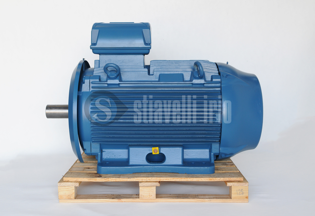 Weg Electric Motor 315 Kw 6 Poles Ie3 Stiavelli Irio Srl