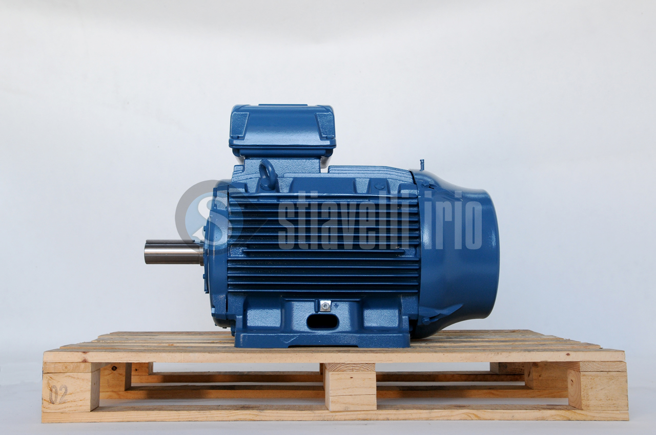 Weg Electric Motor 45 Kw 6 Poles Ie3 Stiavelli Irio Srl