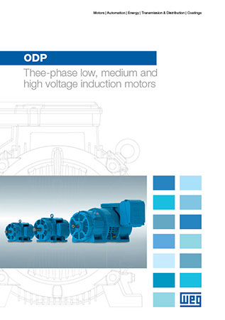 WEG-odp-three-phase-low-medium-and-high-voltage-induction-motors-50033219-brochure-english-DWL-CAT