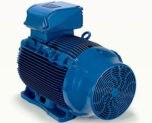 """Motore Elettrico Industriale Weg W22 IE"""""""