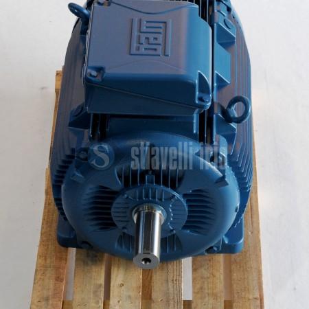 Motore Elettrico WEG 110kw 4 Poli - Frame 315