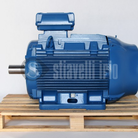 Motore Elettrico WEG - Frame 315