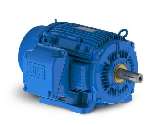 Electromechanical stiavelli irio srl weg electric motors for Weg nema premium motors