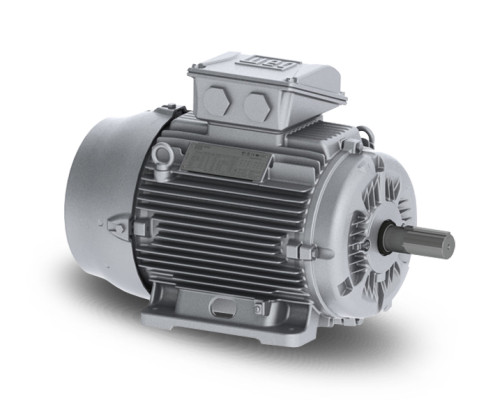 F400 TEFC IE2 Electric MotorsF400 TEFC IE2 Electric Motors