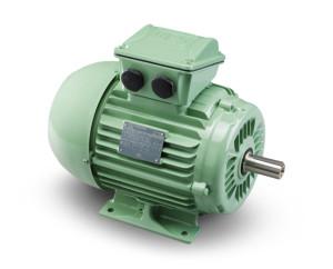 W22 W4 Electric Motor