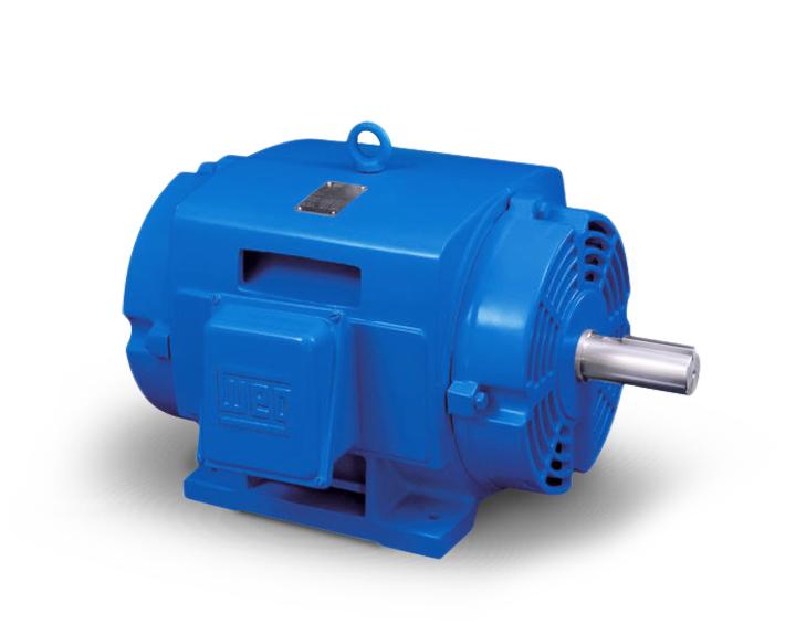 Odp motors stiavelli irio srl for Weg motors technical support