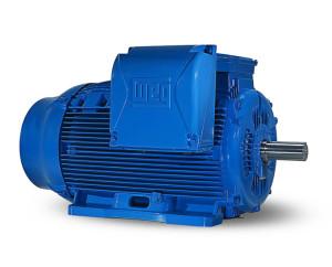 W22 WEG - Motori Elettrici industriali