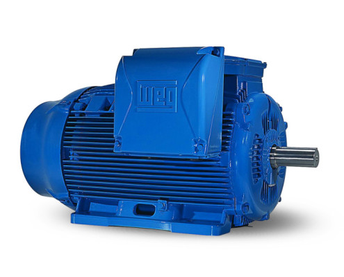 W22 IE3 Industrial Electric Motor