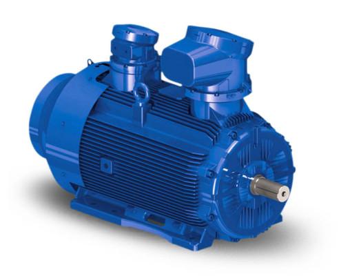 w22xb-xm-xc-electric-motor1-ELMO