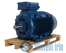 WEG-Electric-Motor-132-kw-175-Hp-4-poles-400V-50-Hz-B3