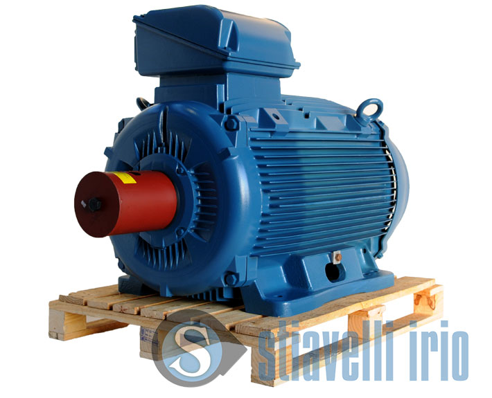 WEG-electric-motor-250kW-340-cv-1000-rpm-400Volts-50Hz