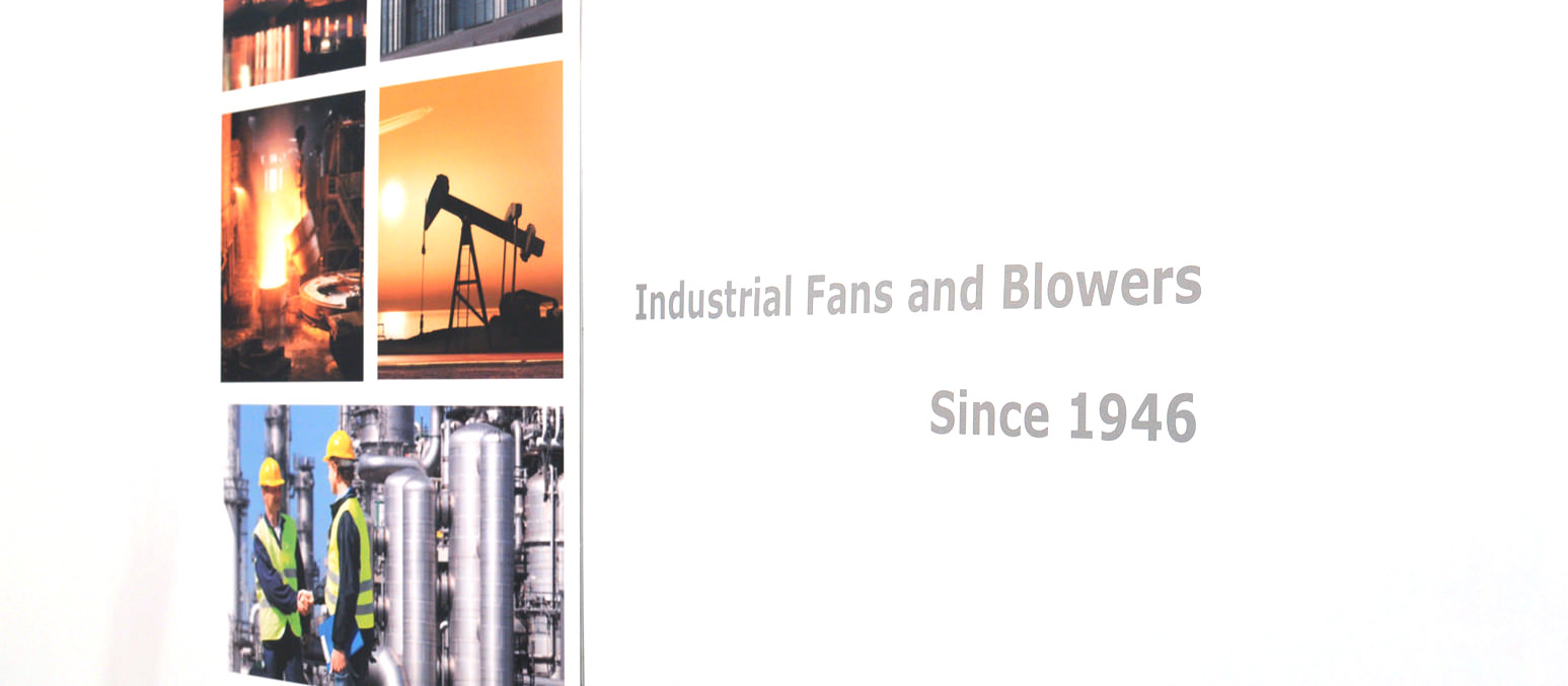 Stiavelli Irio Company