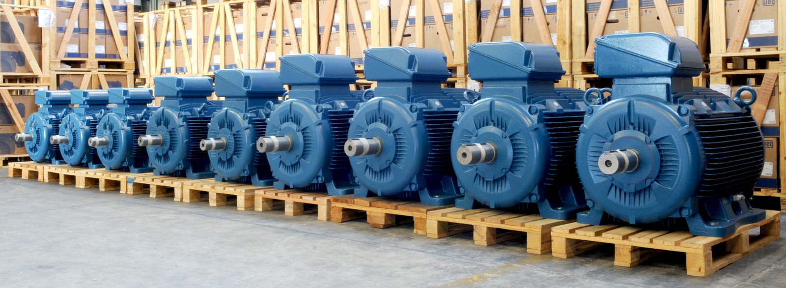 Stiavelli Irio Srl Weg Electric Motors Official Distributor