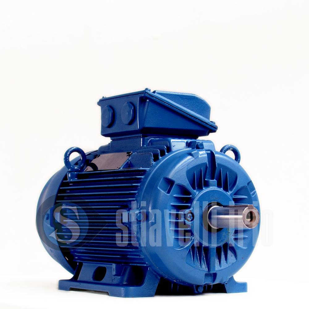 Weg electric motor 15 kw 4 poles ie3 stiavelli irio srl for Weg motors technical support