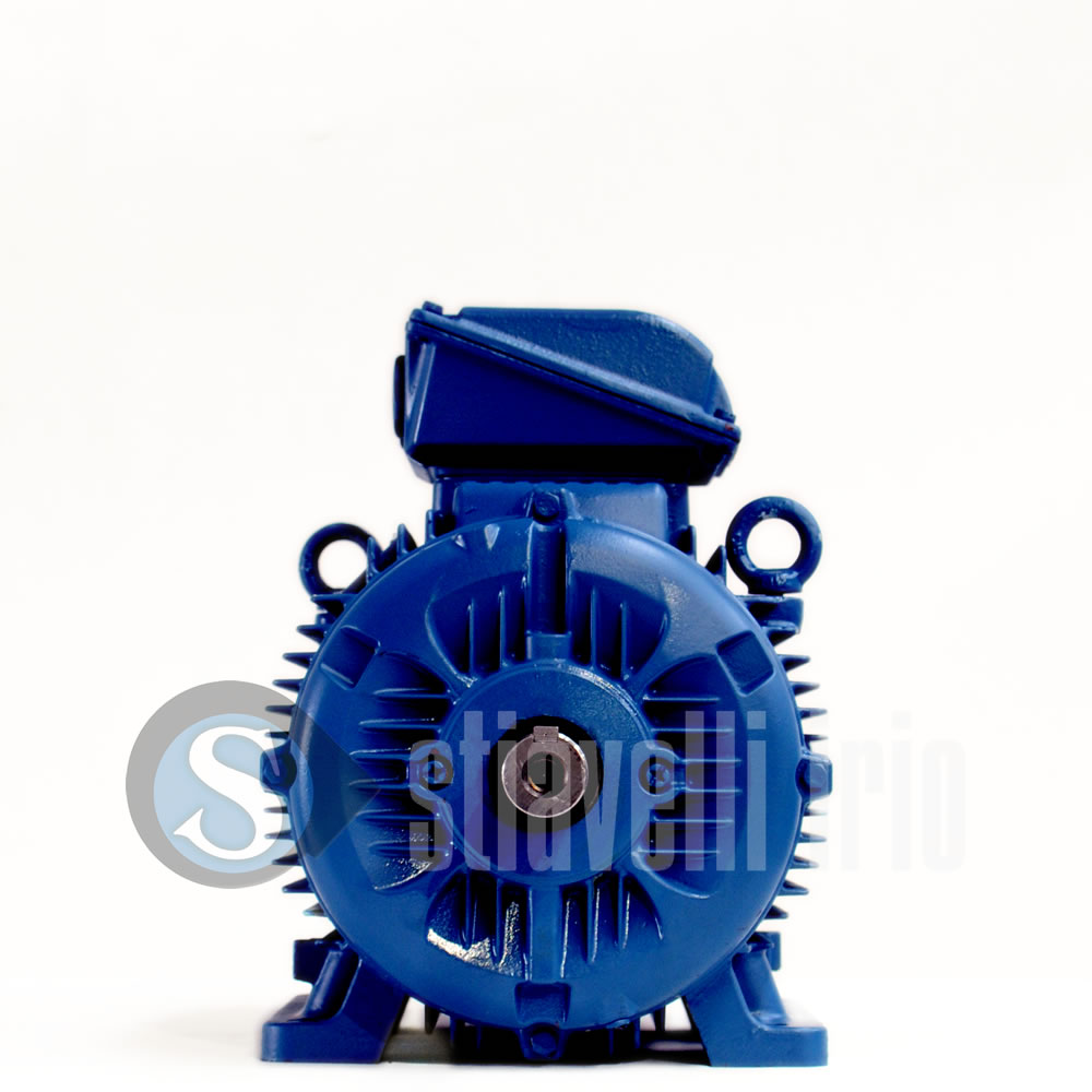 Weg Electric Motors For Sale