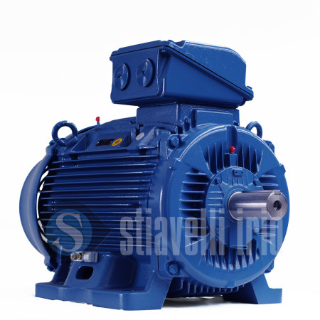 Stiavelli Store Official Weg Electric Motors Wholesale