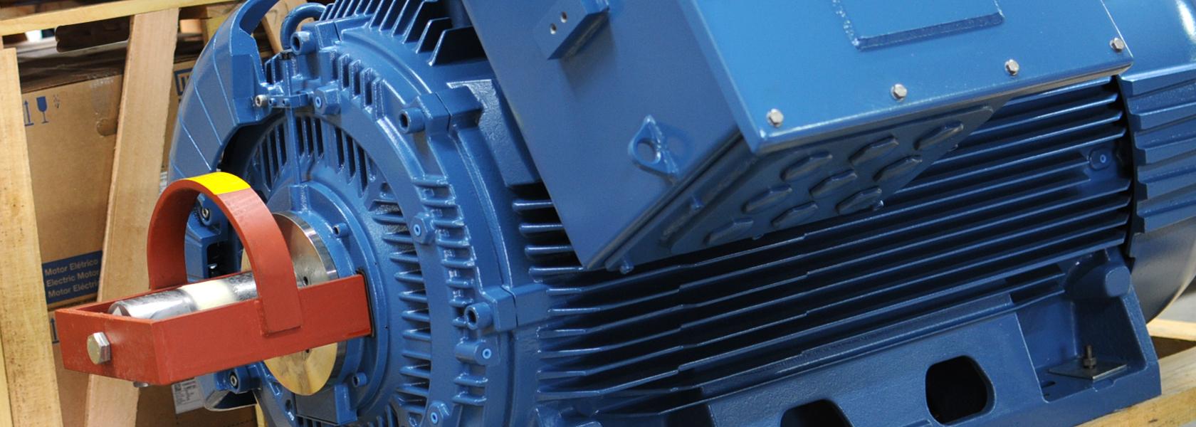 Stiavelli Irio Srl Weg Electric Motors Official Distributor