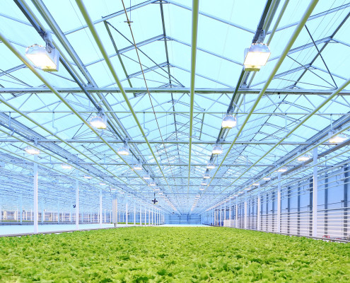 Exhaust Fans for Greenhouses